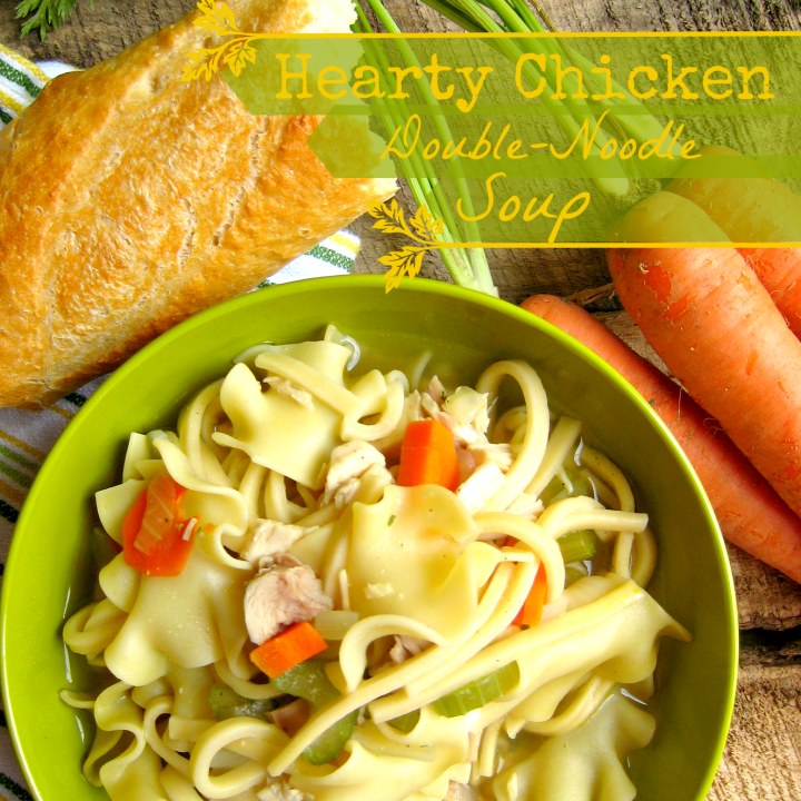 Hearty Chicken Double Noodle Soup