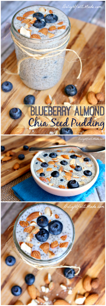 Blueberry Almond Chia Seed Puidding by DelightfulEMade.com