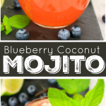 Blueberry-coconut-mojito-DelightfulEMade-vertCollage