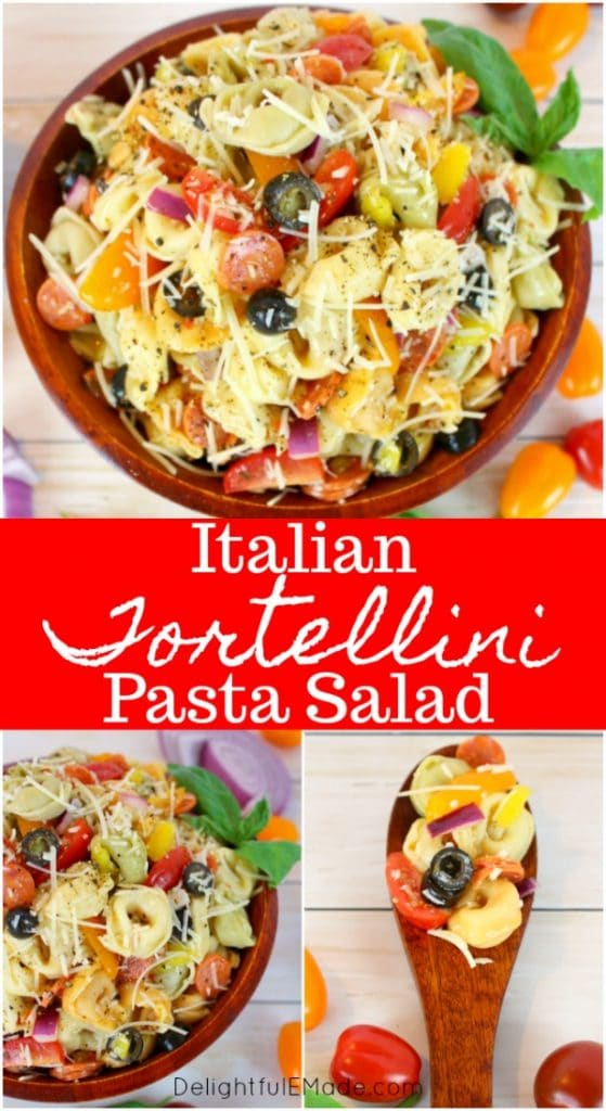 This EASY tortellini salad recipe is perfect for any pot-luck, picnic, cookout or backyard barbecue!  This delicious tortellini pasta salad is loaded with all of your Italian favorites, like salami, tomatoes, olives, banana peppers and more!  Topped with Italian dressing and shredded Parmesan cheese, this Italian pasta salad is amazing!