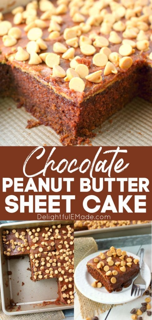Peanut butter chocolate cake, cut into squares, peanut butter chocolate sheet cake.