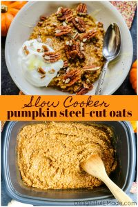 Love pumpkin oatmeal? You need to try this Pumpkin Slow Cooker Steel Cut Oats! This slow cooker oatmeal recipe is not only healthy, but made much easier using your crock pot.
