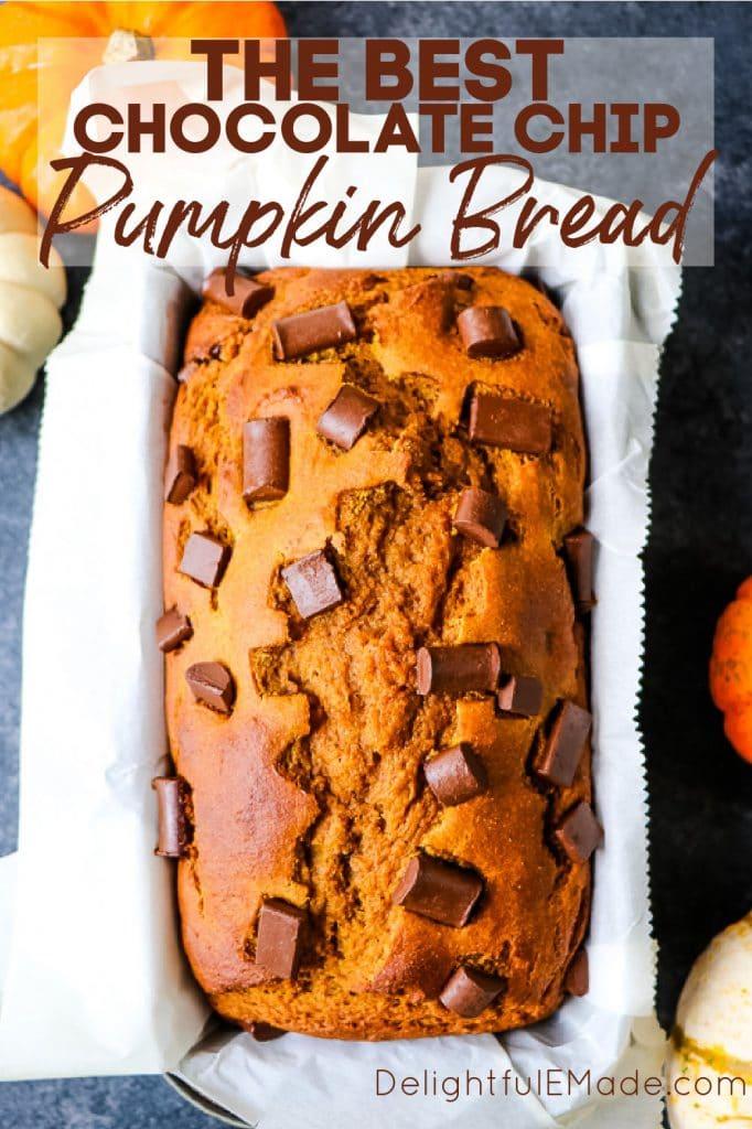 Single loaf of chocolate chip pumpkin bread in loaf pan.