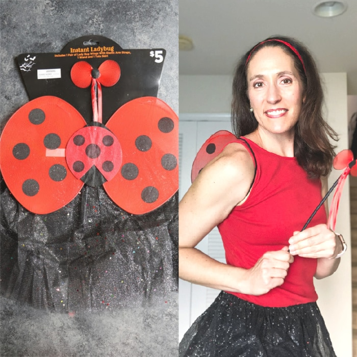 Women's ladybug costume with supplies from Dollar General.