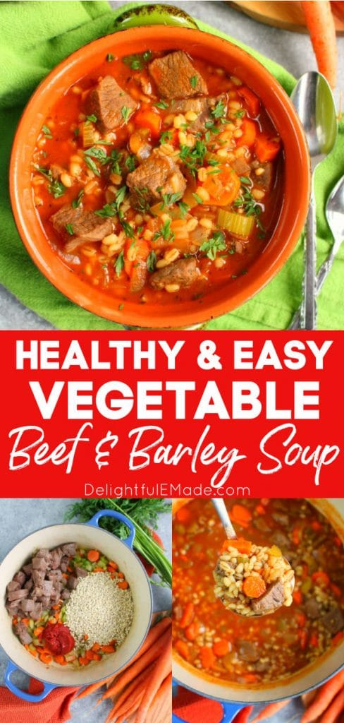 Vegetable beef and barley soup in bowl, ingredients in pot.